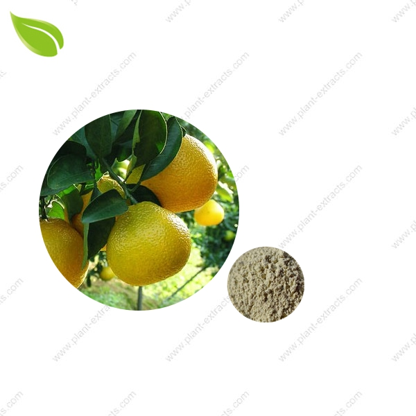 Shaddock Peels Extract