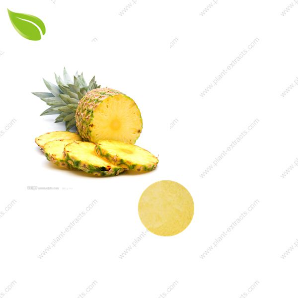 Pineapple Juice Powder
