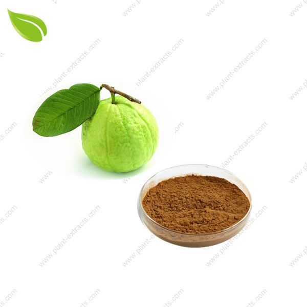 Guava Juice Powder