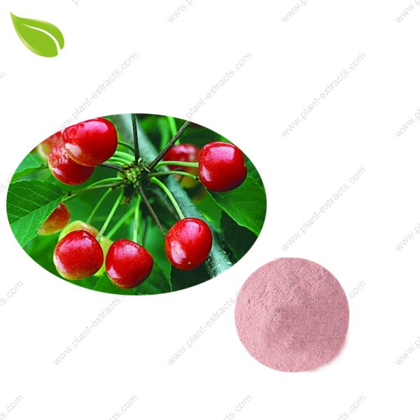 Cherry Juice Powder