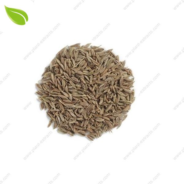 Cumin Seed Extract